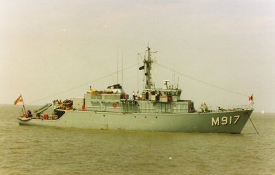 M917 Crocus Crocus2